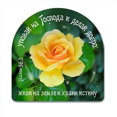 http://www.slovoistra.ru/info/covers/mk160.jpg